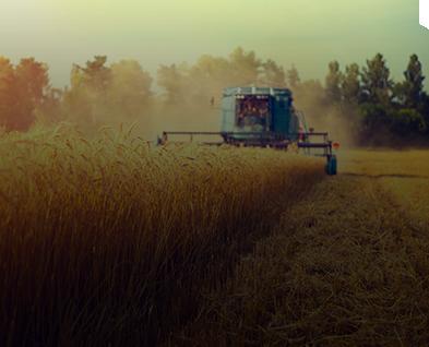 Big bar per il settore agricolo