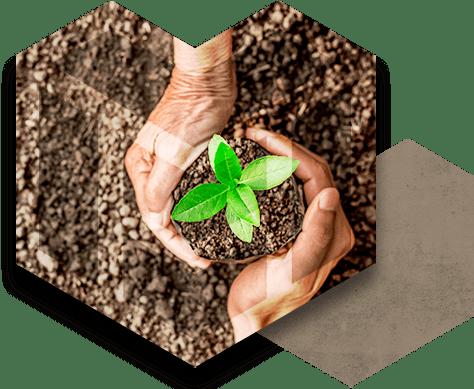 Sacconi Big Bag per Ecologia